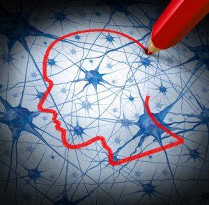 Neurología y Ciencias Sociales