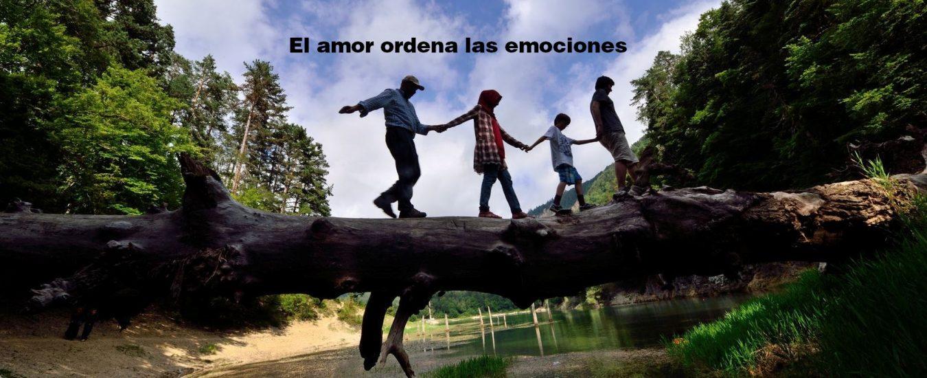 Amor y emociones